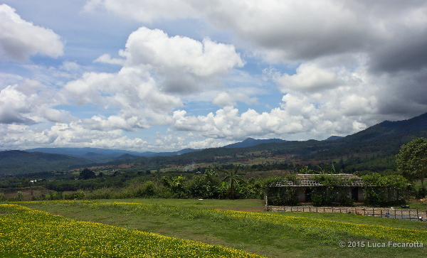 Pai View s