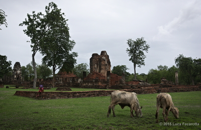 Sukothai View of the Ruins s